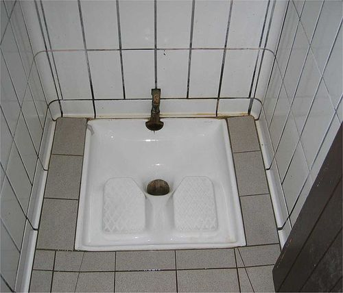 700px-French_Squatter_Toilet
