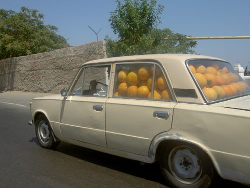 Melons !! Jun 05