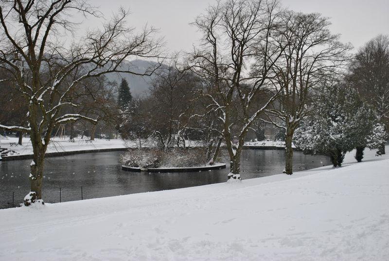 Pavilion Gardens lake